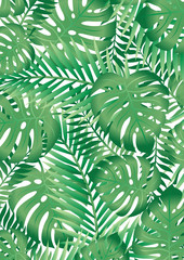 Poster Tropische Bladeren Green tropical palm tree leaves background