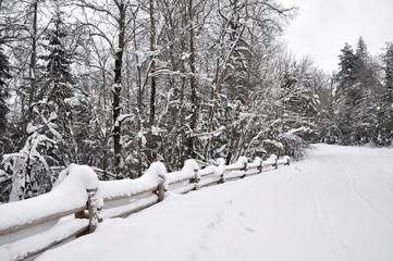 winter road Latvia