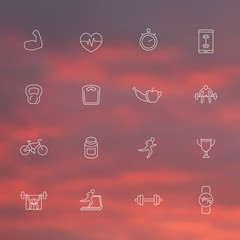 16 fitness, training, gym thin line icons, white transparent set, vector illustration