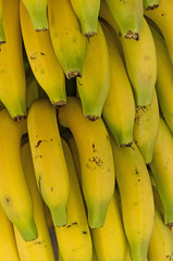 Detail of bunch of bananas