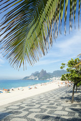 Palm fronds and the iconic boardwalk pattern frame a scenic view of Ipanema Beach from Arpoador, Rio de Janeiro, Brazil