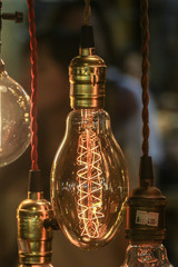 Light bulb decoration (Front focus)