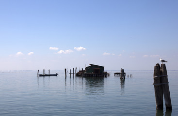 fishing in the lagoon of venetio
