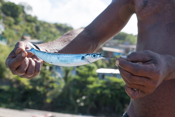 Pêcheur à Sainte Lucie
