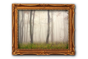 image of misty forest in painting frame