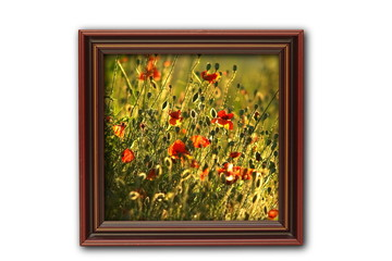 image with poppies on wood frame