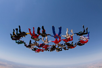Skydiving big group formation, teamwork.