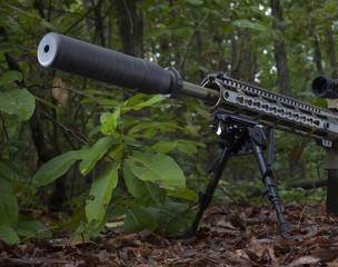 Suppressed rifle