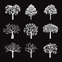 Set of White Trees and Roots. Vector Illustration.
