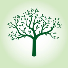 Green Apple Tree and Roots. Vector Illustration.