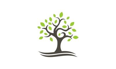 green tree plant vector logo