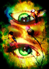 green godness women eye with birds on multicolor background eye contact with mandala linear ornament.
