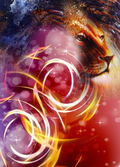 lion head with a majestically peaceful expression, light effect and stars with bookeg. profile portrait.