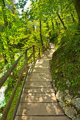 Vintgar gorge and wooden path,Bled,Slovenia