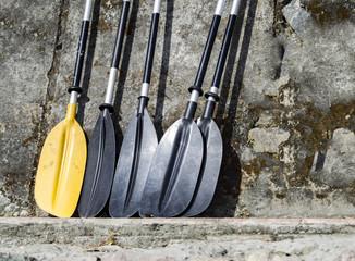 Yellow and black kayak oars