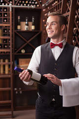 Attractive male winehouse worker is serving a customer