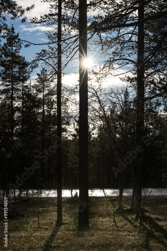 the arctic circle finland stock photo and royalty free images on