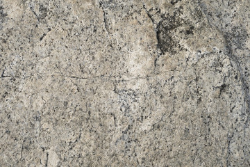 Surface of stone. Texture of black, brown and white stone for background.