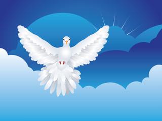 Dove in the Sky