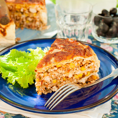 A Piece of Mexican Chicken and Corn Tortilla Pie