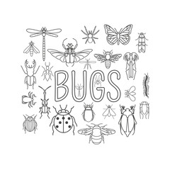 Insects icon flat style. 24 pieces in set. Outline version