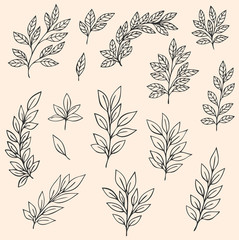 Decorative leaves and branches