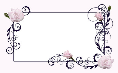 flower frame with rose