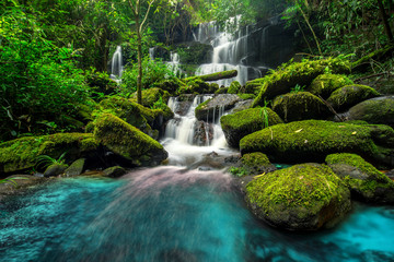 Tuinposter Watervallen beautiful waterfall in green forest in jungle