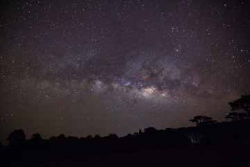 Silhouette of Tree with cloud and Milky Way at Phu Hin Rong Kla
