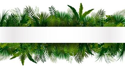 Naklejka premium Tropikalne liście. Kwiatowy wzór tła