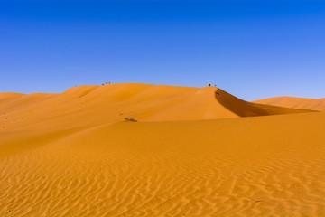 ナミブ砂漠のデューン45