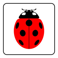 Ladybug sign in the frame. Beautiful red ladybird icon isolated on white background. Bright cute spotted insect cartoon. Design beetle. Use for print production, etc. Colorful Vector illustration