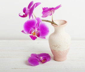 orchid flowers in vase on a wooden table