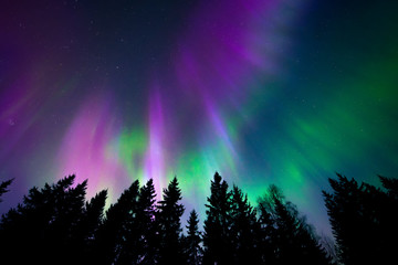 Photo sur Aluminium Aurore polaire Colorful northern lights