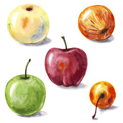 Various apples.