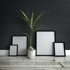 Picture Frames and Potted Plant Inside Modern Home