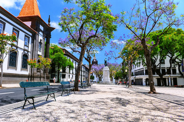 Funchal cityscape with main street at sunny summer day