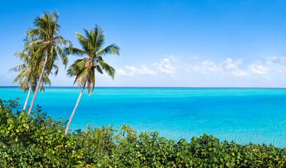 Wall Mural - Südsee Paradies mit Palmen und türkisblauem Meer