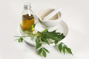 Ayurvedic Herbs Neem with Oil