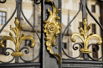 Old baroque metal gate, visible decorative feaves, finesse blacksmith work.
