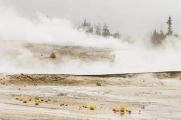 Norris Geyser Basin - Yellowstone National Park - Wyoming - USA