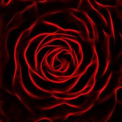 rose flower fractal image
