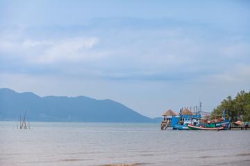 fishing boats at anchor in a harbor.