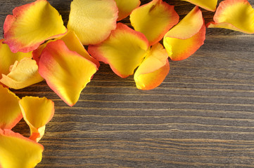 Rose and petals over wooden background.