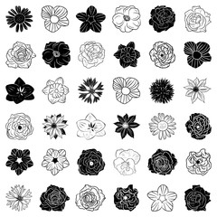 Set of hand drawn flowers, abstract vector templates