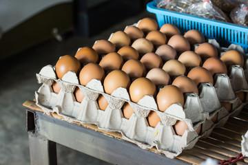 Chicken eggs in paper Panel