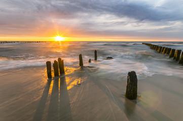 Paliki na morskiej  plaży