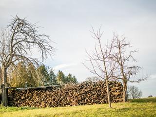 Brennholz abgedeckt