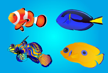 Set of tropical fishes, vector illustration