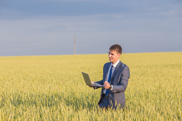 Businessman on a wheat field